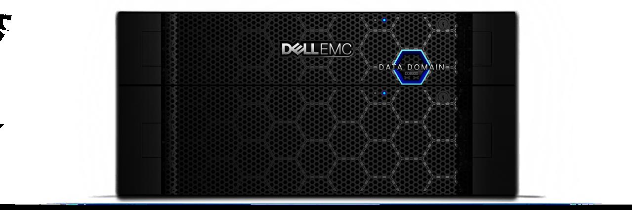 Data Domain DD6800